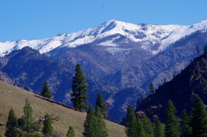 The view of Chicken Peak from the South Fork Ranch.