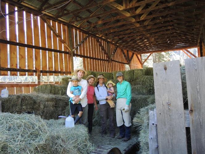 SFR Hay crew